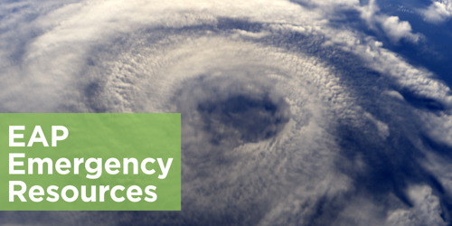 Hurricane Irma Resources and EAP Support Services
