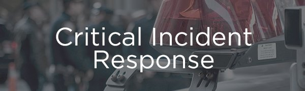 <p>ACI provides immediate and comprehensive critical incident response services to clients worldwide, including social media outreach, onsite support and Critical Incident Stress Debriefings (CISD). Please contact ACI for support for any critical incident, including workplace violence, national crises and other traumas.</p>